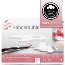 Hahnemühle Expression tömb előlnézeti képe 1 db