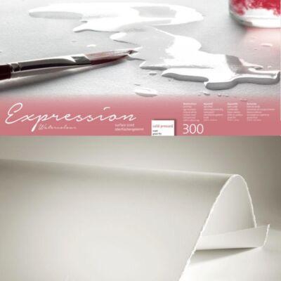Hahnemühle Expression íves papír C.P. (matt), 300 g, 100% pamut 50×65 cm