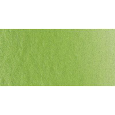 Lukas Aquarell 1862 1165 nedvzöld (Sap Green)